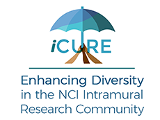 iCURE - Enhancing Diversity in the NCI Intramural Research Community