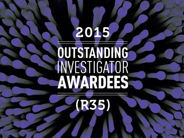 "Banner with title ""2015 Outstanding Investigator AwarDees (R35)"""
