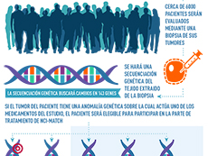 Spanish NCI-Match Inforgraphic