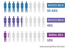 Infographic showing the genetic risk of developing breast cancer by age 70. Women with a mutated BRCA1 gene have a six-in-ten chance of breast cancer by age 70. Women with a mutated BRCA2 gene have a four-in-ten chance of breast cancer. Women with a normal BRCA gene have a one-in-ten chance of breast cancer by age 70.
