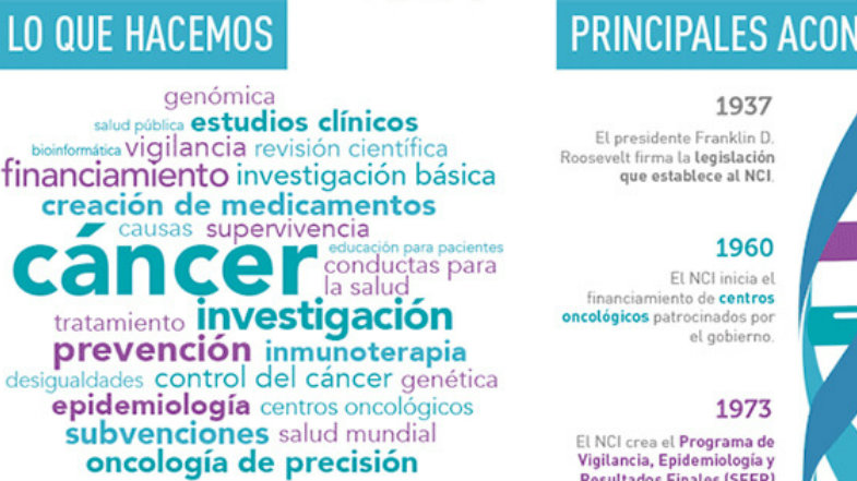 Spanish NCI at a Glance Infographic
