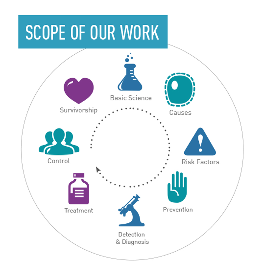 Scope of Our Work Module