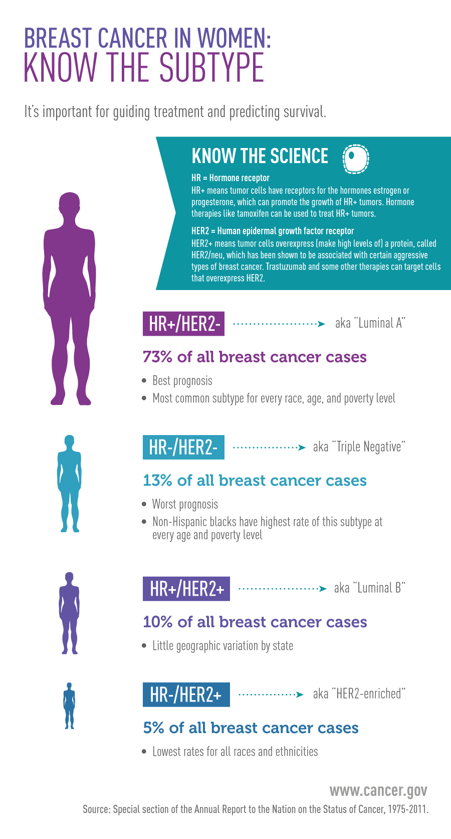 Breast Cancer In Woman: Know the Subtype Infographic