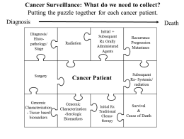 Cancer surveillance science is like a puzzle, pulling together the most relevant patient information