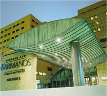 Wayne State University School of Medicine Barbara Ann Karmanos Cancer Institute