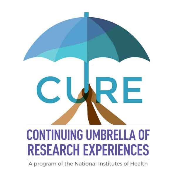 Logo for Intramural Continuing Umbrella of Research Experiences (iCURE)