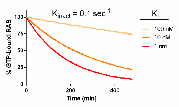Kinetic modeling KRAS inhibition by reversible inhibitors Chart