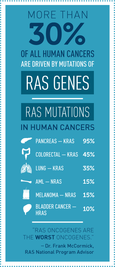 "Infographic that says more than 30% of all human cancers are driven by mutations of the RAS genes. It explains that 95% of pancreatic cancers have a KRAS mutation; 45% of colorectal cancers have a KRAS mutation; 35% of Lung cancers have a KRAS mutation; 30% of Acute Myeloid Leukemias have an NRAS mutation; 15% of Melanomas have a NRAS mutation; and 15% of Bladder cancers have an HRAS mutation. Dr. Frank McCormick, the RAS National Program Advisor, is quoted as saying ""RAS oncogenes are the worst oncogenes."""
