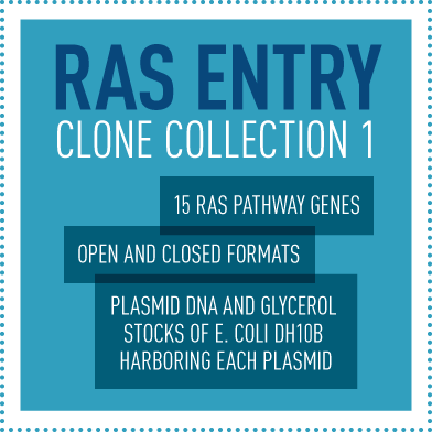 RAS Entry Clone Collection 1: 15 RAS pathway genes; Open and closed formats; Plasmid DNA and glycerol stocks of E. coli DH10B harboring each plasmid