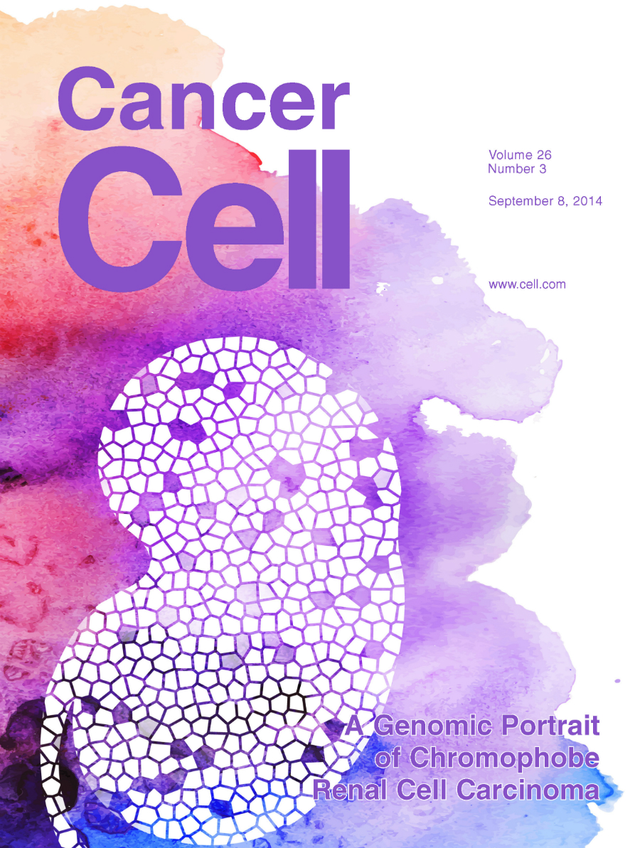 Cover art used for the chromophobe renal cell carcinoma publication in Cancer Cell