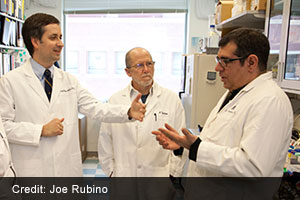 Victor Velculescu, M.D., Ph.D., Bert Vogelstein, M.D., and Nickolas Papadopoulos, Ph.D.