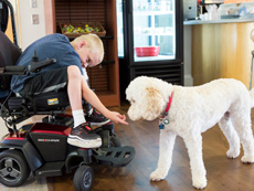 NF1 patient with dog