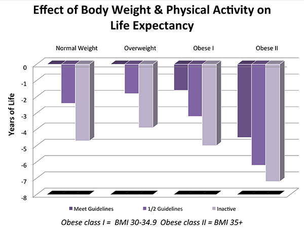 Effect of Body Weight & Physical Activity on Life Expectancy Graph