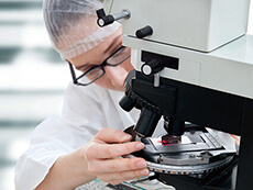 Microscopist analysing biopsy samples