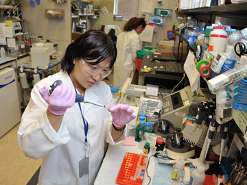 Two female technicians working in a laboratory.