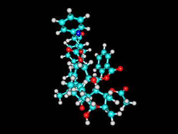 Image of a computer generated Taxol molecule.