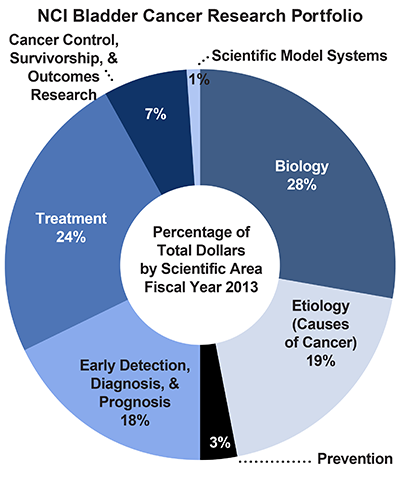 Pie chart of NCI Bladder Cancer Research Portfolio.  Percentage of total dollars by scientific area.  Fiscal year 2013.  Biology, 28%.  Etiology/causes of cancer, 19%.  Prevention, 3%.  Early detection, diagnosis, and prognosis, 18%.  Treatment, 24%.  Cancer control, survivorship, and outcomes research, 7%.  Scientific model systems, 1%.