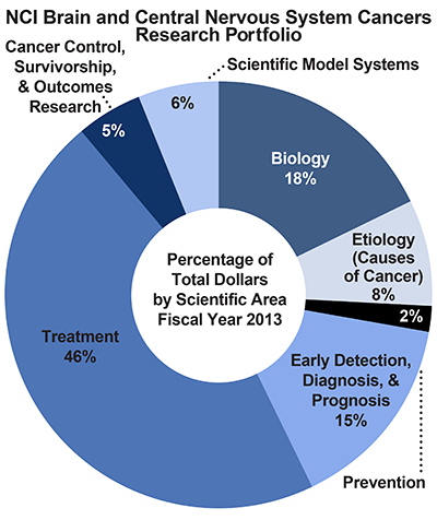 Pie chart of NCI Brain and Central Nervous System Cancers Research Portfolio.  Percentage of total dollars by scientific area.  Fiscal year 2013.  Biology, 18%.  Etiology/causes of cancer, 8%.  Prevention, 2%.  Early detection, diagnosis, and prognosis, 15%.  Treatment, 46%.  Cancer control, survivorship, and outcomes research, 5%.  Scientific model systems, 6%.