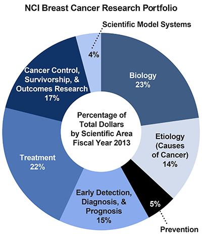 Pie chart of NCI Breast Cancer Research Portfolio.  Percentage of total dollars by scientific area.  Fiscal year 2013.  Biology, 23%.  Etiology/causes of cancer, 14%.  Prevention, 5%.  Early detection, diagnosis, and prognosis, 15%.  Treatment, 22%.  Cancer control, survivorship, and outcomes research, 17%.  Scientific model systems, 4%.