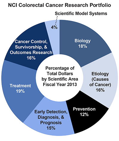 Pie chart of NCI Colorectal Cancer Research Portfolio.  Percentage of total dollars by scientific area.  Fiscal year 2013.  Biology, 18%.  Etiology/causes of cancer, 16%.  Prevention, 12%.  Early detection, diagnosis, and prognosis, 15%.  Treatment, 19%.  Cancer control, survivorship, and outcomes research, 16%.  Scientific model systems 4%.