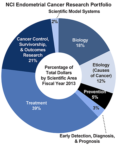 Pie chart of NCI Endometrial Cancer Research Portfolio.  Percentage of total dollars by scientific area.  Fiscal year 2013.  Biology, 18%.  Etiology/causes of cancer, 12%.  Prevention, 5%.  Early detection, diagnosis, and prognosis, 3%.  Treatment, 39%.  Cancer control, survivorship, and outcomes research, 21%.  Scientific model systems, 2%.