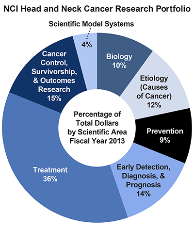 Pie chart of NCI Head and Neck Cancers Research Portfolio.  Percentage of total dollars by scientific area.  Fiscal year 2013.  Biology, 10%.  Etiology/causes of cancer, 12%.  Prevention, 9%.  Early detection, diagnosis, and prognosis, 14%.  Treatment, 36%.  Cancer control, survivorship, and outcomes research, 15%.  Scientific model systems, 4%.