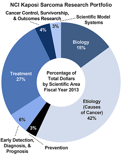Pie chart of NCI Kaposi Sarcoma Research Portfolio.  Percentage of total dollars by scientific area.  Fiscal year 2013.  Biology, 15%.  Etiology/causes of cancer, 42%.  Prevention, 3%.  Early detection, diagnosis, and prognosis, 6%.  Treatment, 27%.  Cancer control, survivorship, and outcomes research, 4%.  Scientific model systems, 3%.