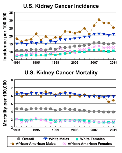 Line graphs showing U.S. Kidney Cancer incidence and mortality per 100,000 by race and gender from 1991-2011.  In 2011, African American males have the highest incidence, followed by white males, African American females, and white females.  In 2011, white males have the highest mortality followed by African American males, African American females, and white females.