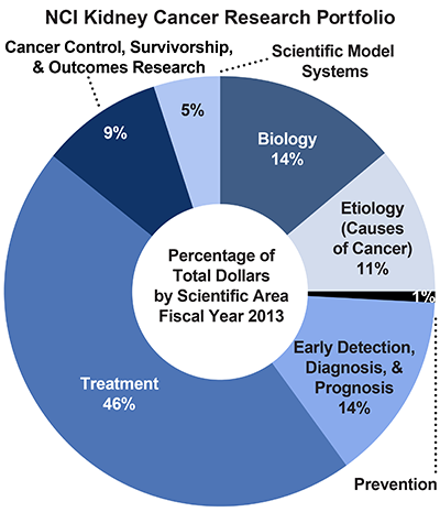 Pie chart of NCI Kidney Cancer Research Portfolio.  Percentage of total dollars by scientific area.  Fiscal year 2013.  Biology, 14%.  Etiology/causes of cancer, 11%.  Prevention, 1%.  Early detection, diagnosis, and prognosis, 14%.  Treatment, 46%.  Cancer control, survivorship, and outcomes research, 9%.  Scientific model systems, 5%.