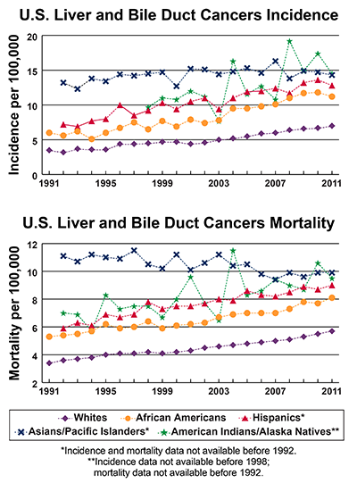 Line graphs showing U.S. Liver and Bile Duct Cancers Incidence and mortality per 100,000 by race and ethnicity from 1991-2011.  In 2011, American Indians/Alaska Natives have the highest incidence followed by Asians/Pacific Islanders, Hispanics, African Americans, and whites. In 2011, Asians/Pacific Islanders have the highest mortality followed by American Indians/Alaska Natives, Hispanics, African Americans, and whites.
