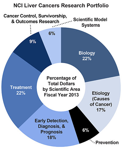 Pie chart of NCI Liver Cancer Research Portfolio.  Percentage of total dollars by scientific area.  Fiscal year 2013.  Biology, 22%.  Etiology/causes of cancer, 17%.  Prevention, 6%.  Early detection, diagnosis, and prognosis, 18%.  Treatment, 22%.  Cancer control, survivorship, and outcomes research, 9%.  Scientific model systems, 6%.