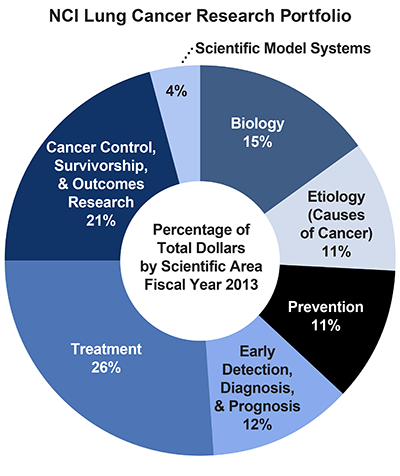 Pie chart of NCI Lung Cancer Research Portfolio.  Percentage of total dollars by scientific area.  Fiscal year 2013.  Biology, 15%.  Etiology/causes of cancer, 11%.  Prevention, 11%.  Early detection, diagnosis, and prognosis, 12%.  Treatment, 26%.  Cancer control, survivorship, and outcomes research, 21%.  Scientific model systems, 4%.