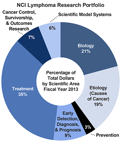 Pie chart of NCI Lymphoma Research Portfolio.  Percentage of total dollars by scientific area.  Fiscal year 2013.  Biology, 21%.  Etiology/causes of cancer, 19%.  Prevention, 3%.  Early detection, diagnosis, and prognosis, 9%.  Treatment, 35%.  Cancer control, survivorship, and outcomes research, 7%.  Scientific model systems, 6%.