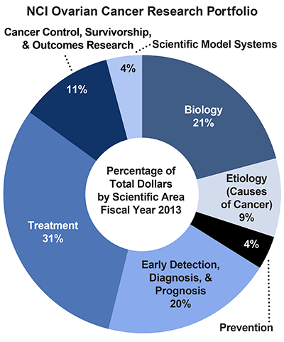 Pie chart of NCI Ovarian Cancer Research Portfolio.  Percentage of total dollars by scientific area.  Fiscal year 2013.  Biology, 21%.  Etiology/causes of cancer, 9%.  Prevention, 4%.  Early detection, diagnosis, and prognosis, 20%.  Treatment, 31%.  Cancer control, survivorship, and outcomes research, 11%.  Scientific model systems, 4%.