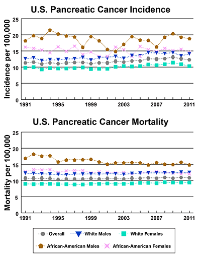 Line graphs showing U.S. Pancreatic Cancer incidence and mortality per 100,000, by race and gender from 1991-2011.  In 2011, incidence is highest for African-American males, followed by African-American females, white males, and white females. In 2011, African-American males have the highest mortality, followed by white males, African-American females and white females.