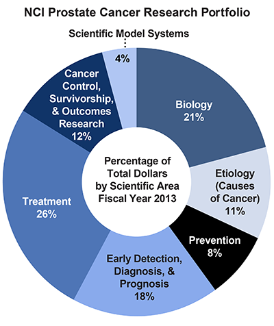 Pie chart of NCI Prostate Cancer Research Portfolio.  Percentage of total dollars by scientific area.  Fiscal year 2013.  Biology, 21%.  Etiology/causes of cancer, 11%.  Prevention, 8%.  Early detection, diagnosis, and prognosis, 18%.  Treatment, 26%.  Cancer control, survivorship, and outcomes research, 12%.  Scientific model systems, 4%.