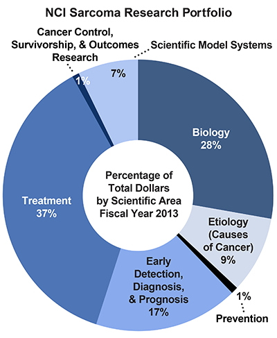 Pie chart of NCI Sarcoma Research Portfolio.  Percentage of total dollars by scientific area.  Fiscal year 2013.  Biology, 28%.  Etiology/causes of cancer, 9%.  Prevention, 1%.  Early detection, diagnosis, and prognosis, 17%.  Treatment, 37%.  Cancer control, survivorship, and outcomes research, 1%.  Scientific model systems, 7%.
