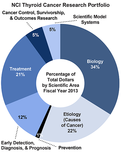 Pie chart of NCI Thyroid Cancer Research Portfolio.  Percentage of total dollars by scientific area.  Fiscal year 2013.  Biology, 34%.  Etiology/causes of cancer, 22%.  Prevention, 1%.  Early detection, diagnosis, and prognosis, 12%.  Treatment, 21%.  Cancer control, survivorship, and outcomes research, 5%.  Scientific model systems, 5%.