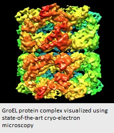 Protein complex comprised of yellow, blue and green 'globs', representing individual proteins, bound together in one square matrix