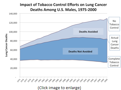 This line chart plots lung cancer death rates from 1975-2000, under the three scenarios studied by the researchers; i.e., No Tobacco Control, Actual Tobacco Control, and Complete Tobacco Control. This chart provides data for U.S. Men.