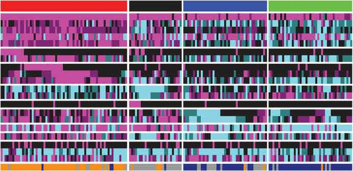 Box of colored bars, depicting genes identified by TCGA for association with methylation (blue) or mutation (purple) in squamous lung cancer.