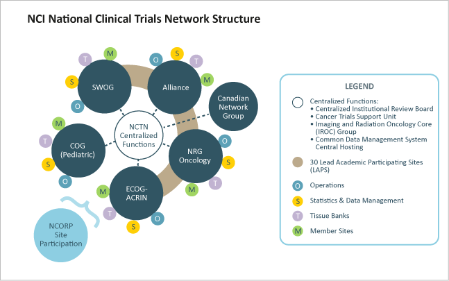 Nci National Clinical Trials Network Structure National