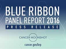 Blue Ribbon Panel Report 2016 Press Release