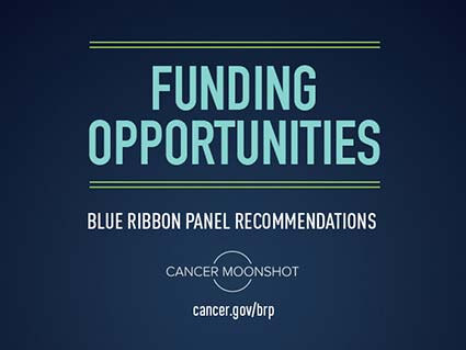 Funding Opportunities for the Blue Ribbon Panel Recommendations of the Cancer Moonshot