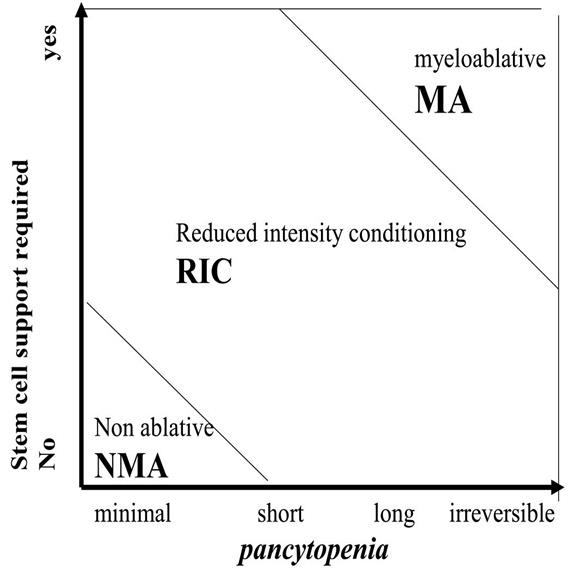 Figure 3; chart shows classification of conditioning regimens based on duration of pancytopenia and requirement for stem cell support; chart shows myeloablative regimens, nonmyeloablative regimens, and reduced intensity regimens.