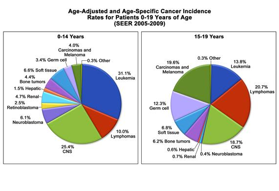 Age-adjusted and age-specific cancer incidence rates for patients 0-19 years of age (SEER 2005-2009); chart shows leukemia, lymphoma, central nervous system (CNS) tumors, neuroblastoma, retinoblastoma, renal tumors, hepatic tumors, bone tumors, soft tissue tumors, germ cell tumors, carcinomas and melanomas, and other cancer incidence by percent.