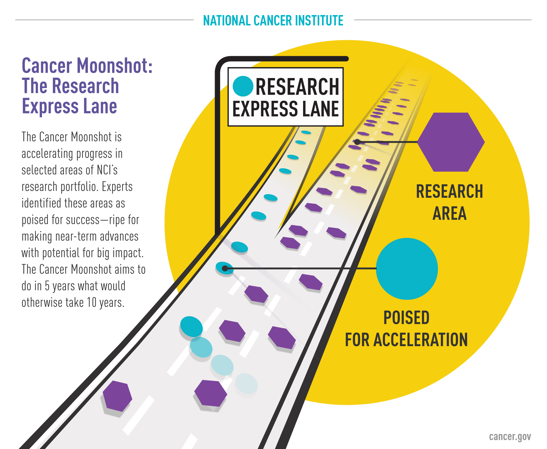 Illustration showing that the Cancer Moonshot is similar to an express lane on a highway when it comes to accelerating cancer research