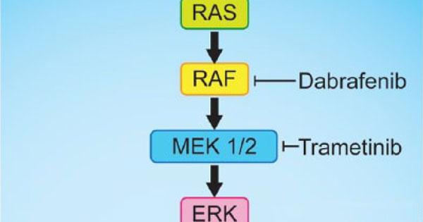 Dabrafenib Plus Trametinib Approved for Melanoma, Thyroid ... Dabrafenib