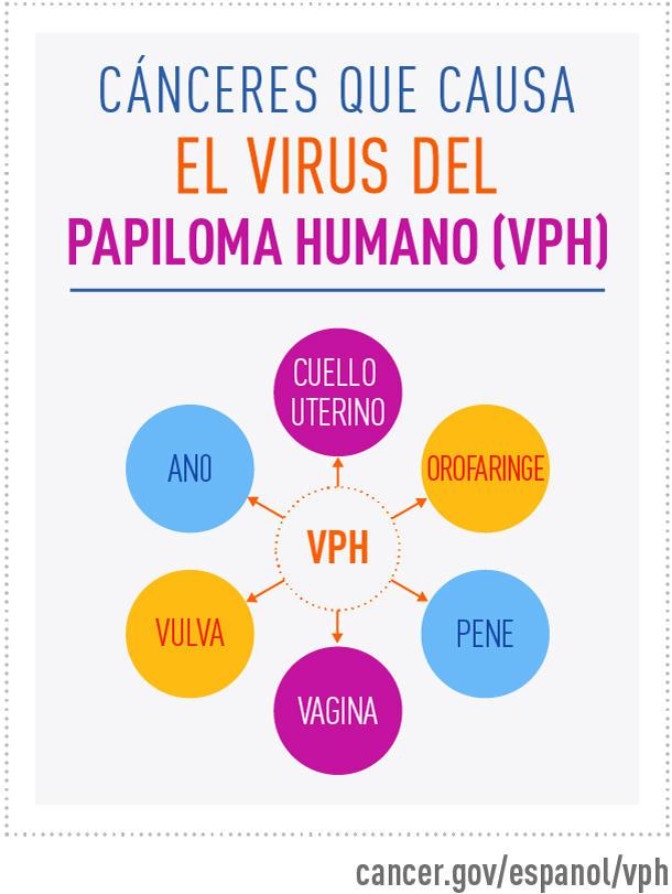 el virus del papiloma es cancer