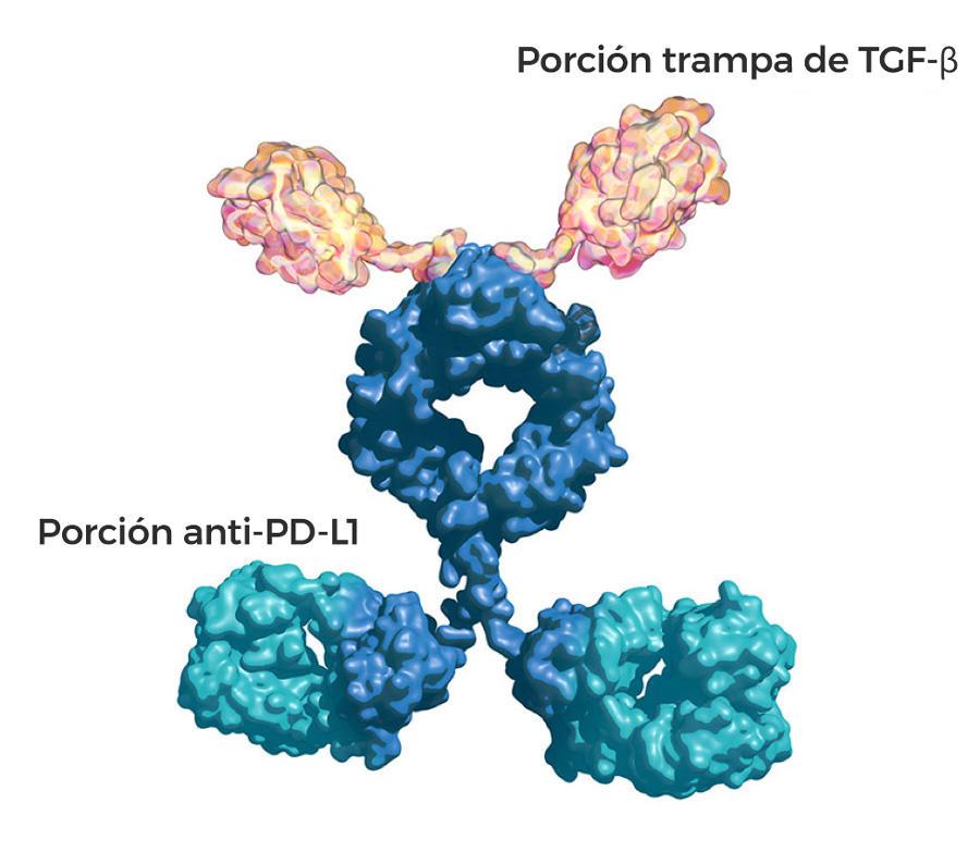 fármaco beta para la próstata